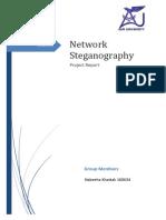 Network Steganography Report
