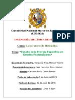 Informe 3 Cahuana Pirca