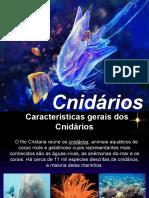 CNIDARIOS.pdf