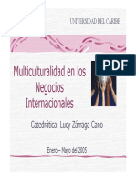Multiculturalidad en Negocios Int 1224167545315527 8