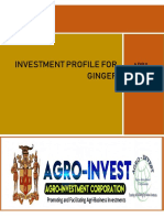 Ginger Investment Profile 2019