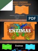 Trabajo Enzimas Hormonas y Vitaminas