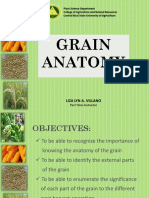 Anatomy of Grain