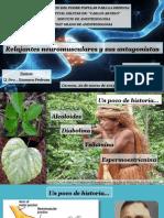 SEMINARIO DE RNM.pptx