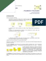 poliminos_policubos.pdf