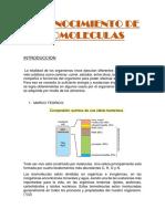 Reconocimiento de Biomoleculas