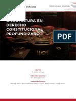 Programa Derecho Constitucional Profundizado 2019