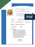 La Madera - Informe Final