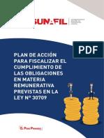 Plan de Acción para Fiscalización en materia Remunerativa