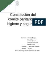 Constitución Del Comité Paritario de Higiene y Seguridad