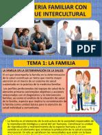 Consejeria Familiar Con Enfoque Intercultural