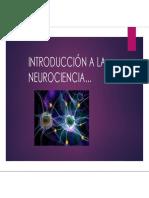 Introducción a La Neurociencia Libro