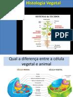 Histologia Vegetal