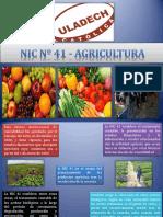 NIC Nº 41 - AGRICULTURA.pdf