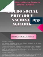 SEGURO SOCIAL PRIVADO Y NACIONAL AGRARIO.pdf