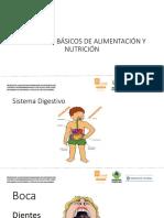 Diapositiva Nutricion Conceptos