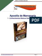 1-Conhecimentos Basicos Sobre Madeiras
