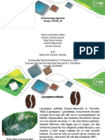 Diapositivas Colaborativo Grupal Final