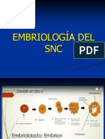 01 NEUROEMBRIOLOGIA.pdf
