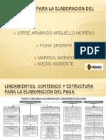 LINEAMIENTOS PARA LA ELABORACIÓN DEL PAGA (1).pptx2.pptx