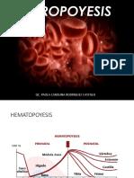 Eritropoyesis introducción