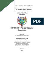 Cardiopatias Congenitas Seminario Grupo 18