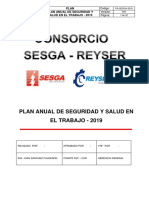 2. PLAN ANUAL DE SEGURIDAD Y SALUD EN EL TRABAJO-2019.docx