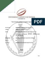 2 Derechos Laborales en La Constitución Política de 1993 Laboral