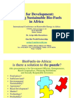 Implementing Sustainable Bio-Fuels in Africa - Arrigo Della Gherardesca