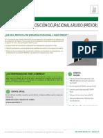 Protocolos Ministerio de.salud Protocolo de Exposicion Al Ruido Prexor Converted