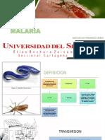 paludismo o malaria peditrica .pptx
