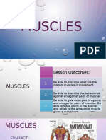 Grade 7 - Science - Muscles