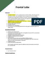 Detailed Brain Functions