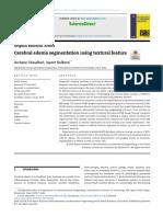 Cerebral edema segmentation using textural feature