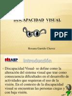 discapacidad visual2