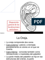 anatomía oreja
