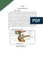 jiptummpp-gdl-sarahalfia-48357-3-babii.pdf