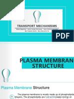 BIOLOGY TransportMechanisms