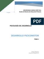Tema 1 Desarrollo Psicomotor