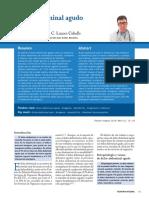 n1-015-024_CarlesLuaces.pdf