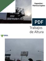 TRABAJOS EN ALTURA ESCOL.pdf