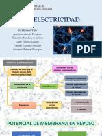 BIOELECTRICIDAD - SEMINARIO 11