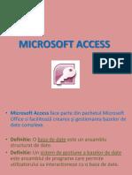 Prezentare Access