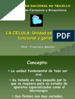 CLASE N° 4-B. ESTRUCTURA Y FUNCIÓN GENÉTICA
