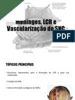 Meninges, Vasculariação SNC, Memória e Aprendizagem