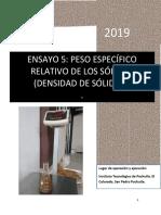 REPORTE DENSIDAD 5.docx