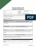 Guía de práctica N°5a_Formato de Antecedentes