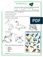 Especialidade de Aves