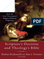 Scripture's Doctrine and Theology's Bible