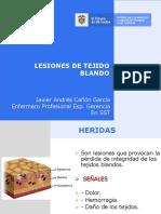 Lesiones de Tejido Blando